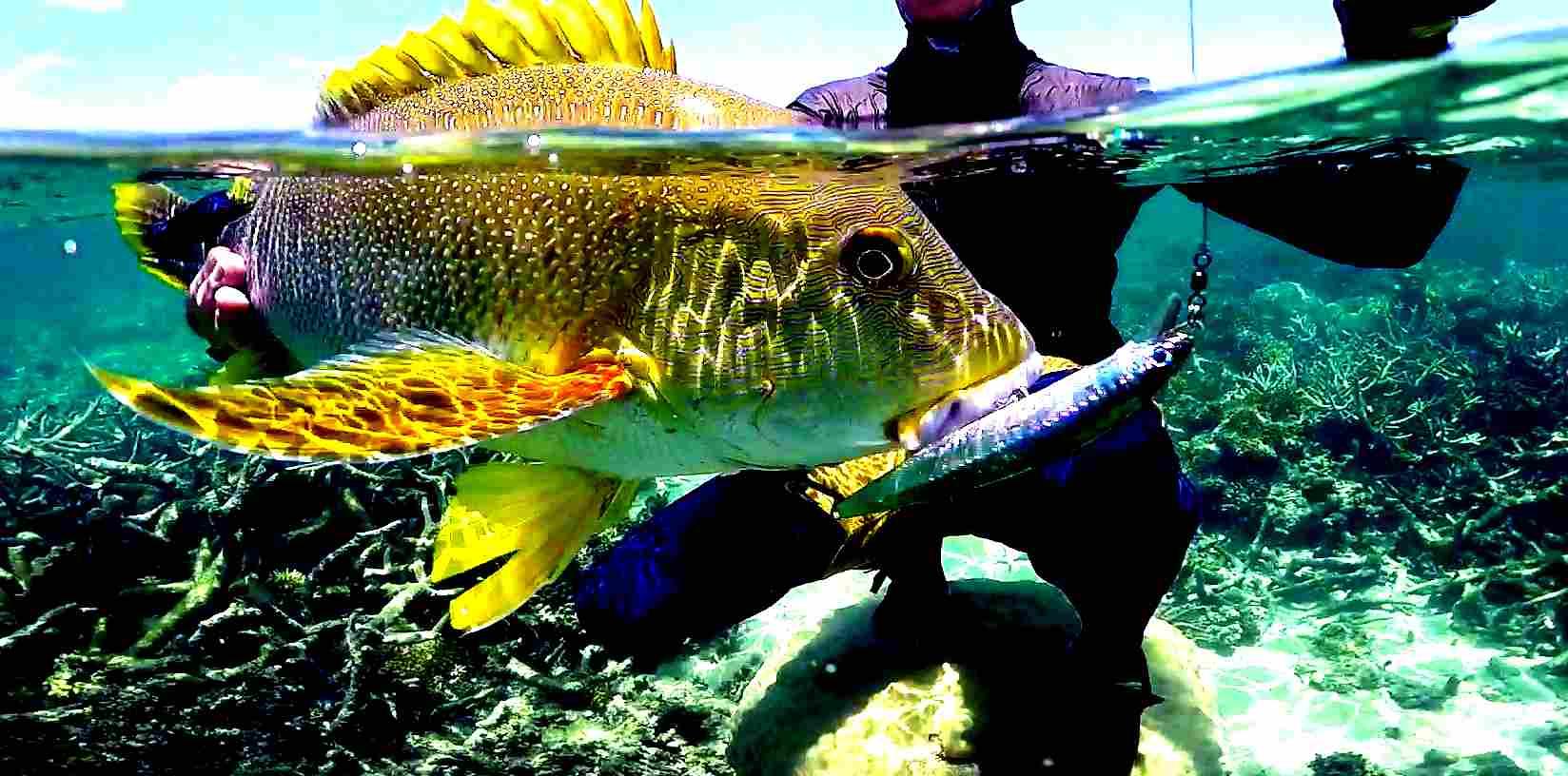 Action cam per la pesca sportiva