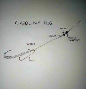 carolina rig spinning