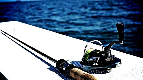 attrezzatura da pesca per le seppie