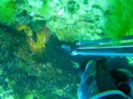 miglior torcia subacquea recensione