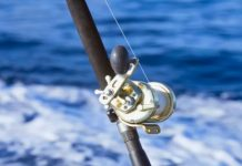 mulinello da vertical jigging