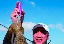 pesca con totanara