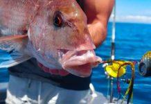 pesca con kabura