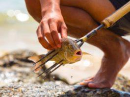 pesca con la fiocina a mano